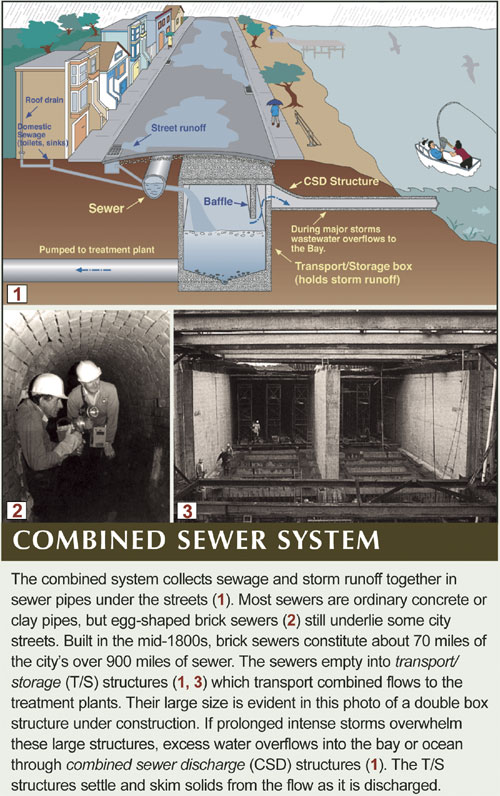 San Francisco Combined Sewers